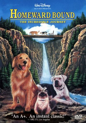 Homeward Bound: The Incredible Journey Dvd cover